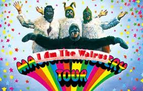 I ' M The Walrus Beatle s  I am the Walrus